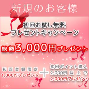 ひとみワールド 新規 キャンペーン お得