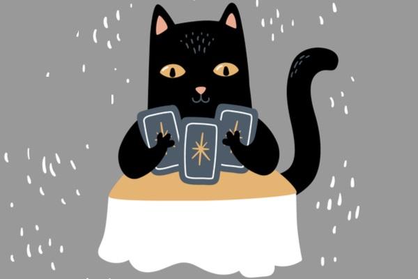 スピリチュアル 猫との縁 占い師