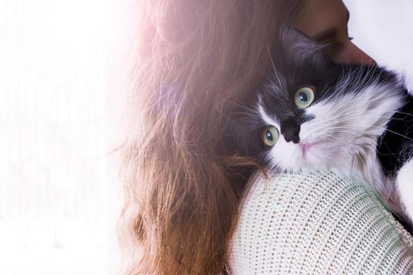 スピリチュアル 猫との縁 力