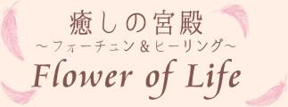 安城 当たる占い 癒しの宮殿 Flower of Love